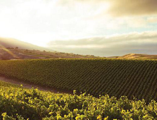 Join us for La Crema Wine Dinner on April 26!
